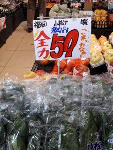 生鮮市場奥村の小松菜