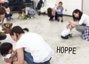 hoppe4