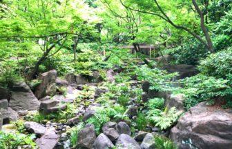 梅田スカイビル 中自然の森